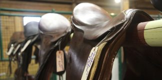Saddles at a tack swap