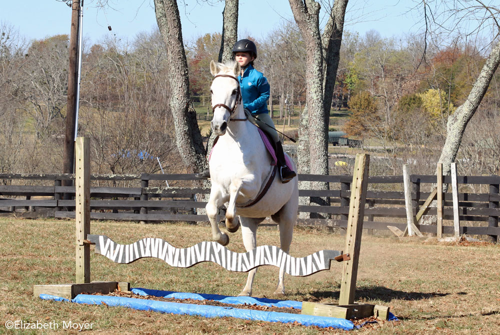 Horse jumping a striped jump