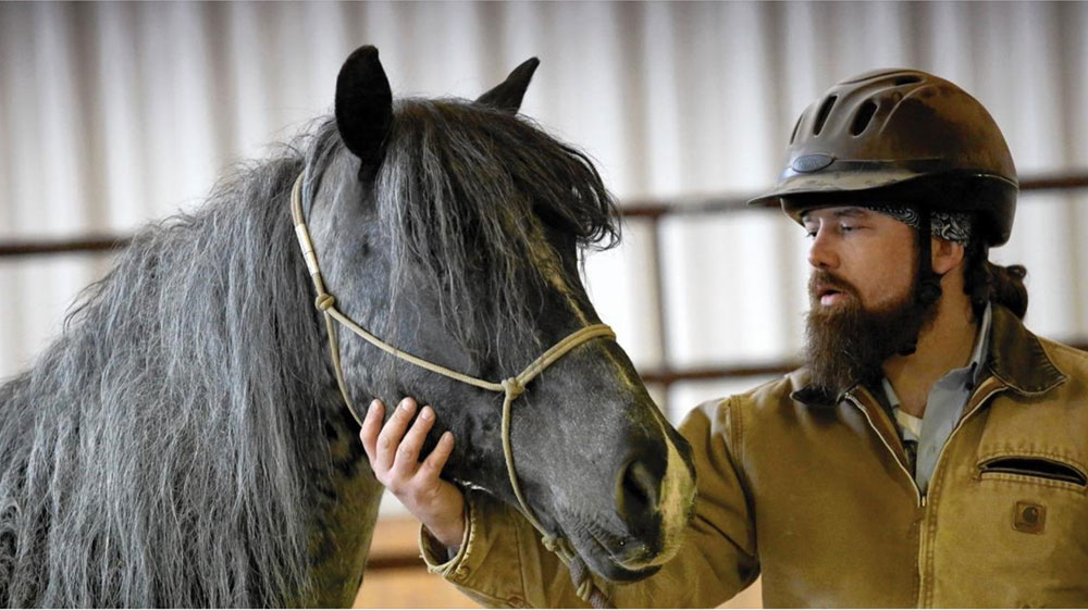 BraveHearts Equine Assisted Therapy