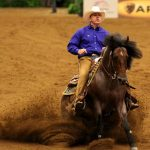 Criollo horse competing in reining