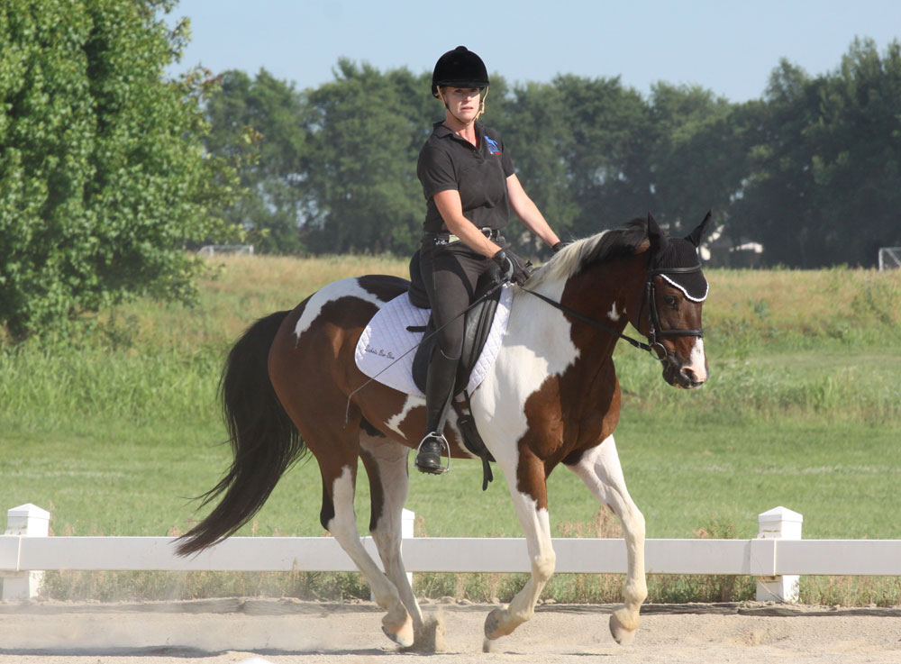 Pinto dressage pony canter