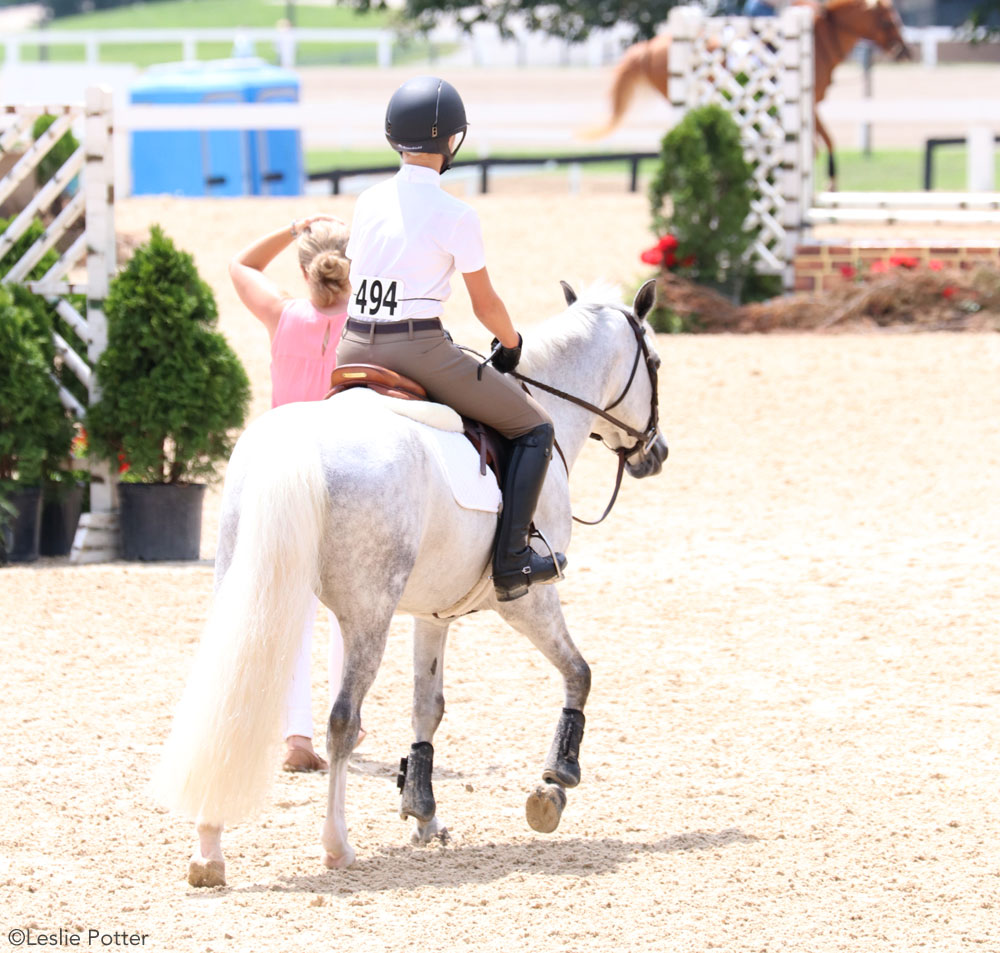 Pony with a clean white tail at a horse show