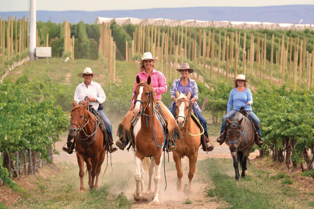 Trail Riding through the Vines