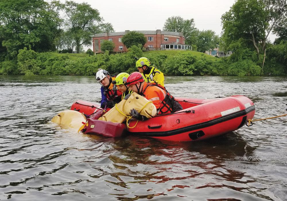 Horse rescue practice