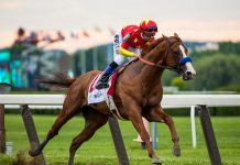 Justify at the Belmont Stakes