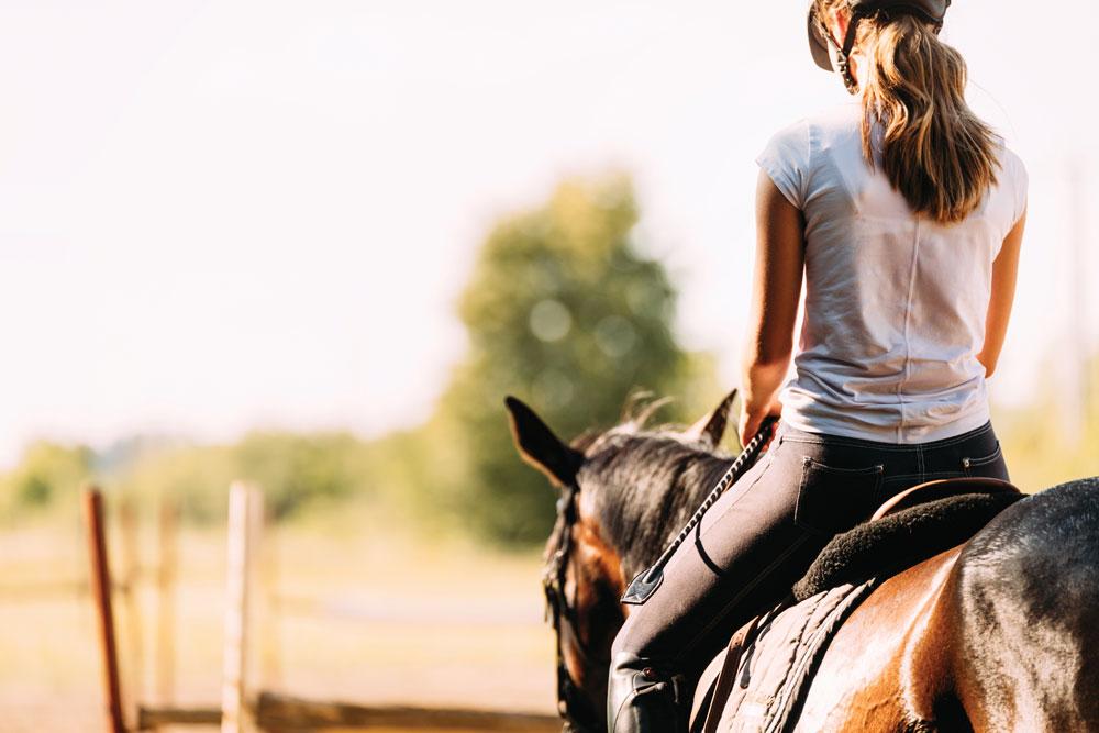 Rider's back