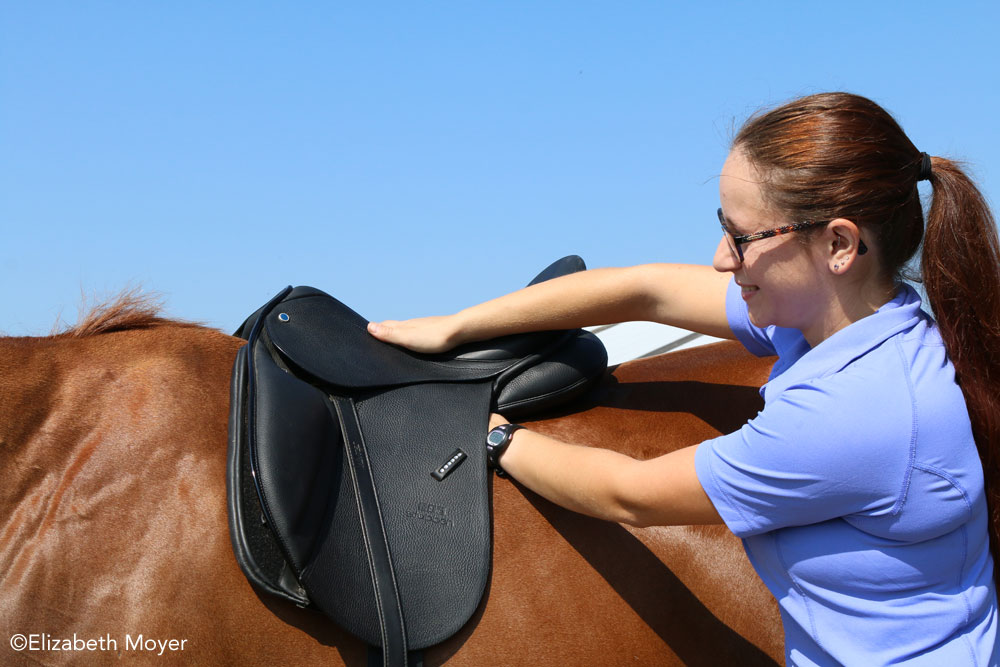 Checking an English saddle for fit