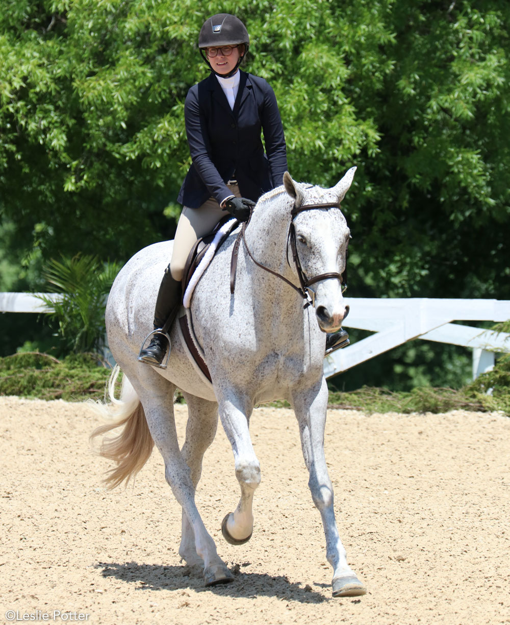 Hunt seat equitation canter