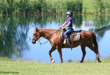 Young girl trail riding