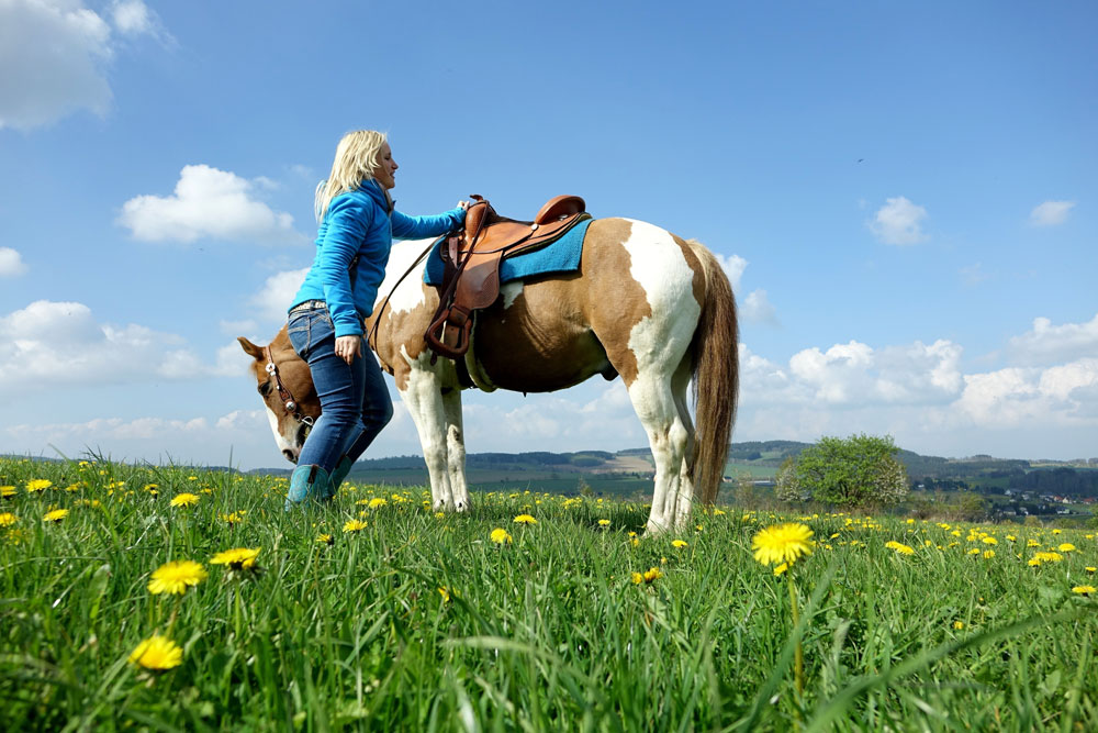 Woman with pinto horse