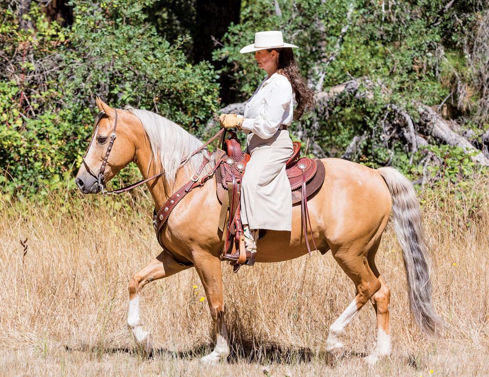 Cowboy Dressage Jog