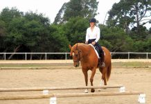 Riding over cavaletti at an angle