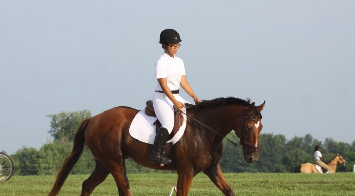 Young Rider competing in a dressage show