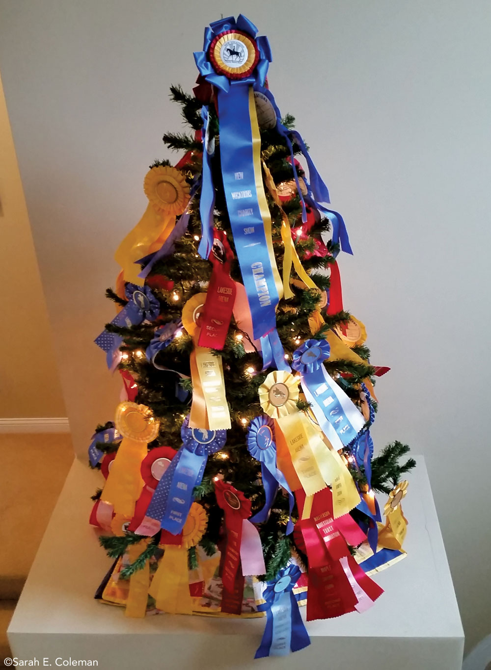 Horse show ribbon tree