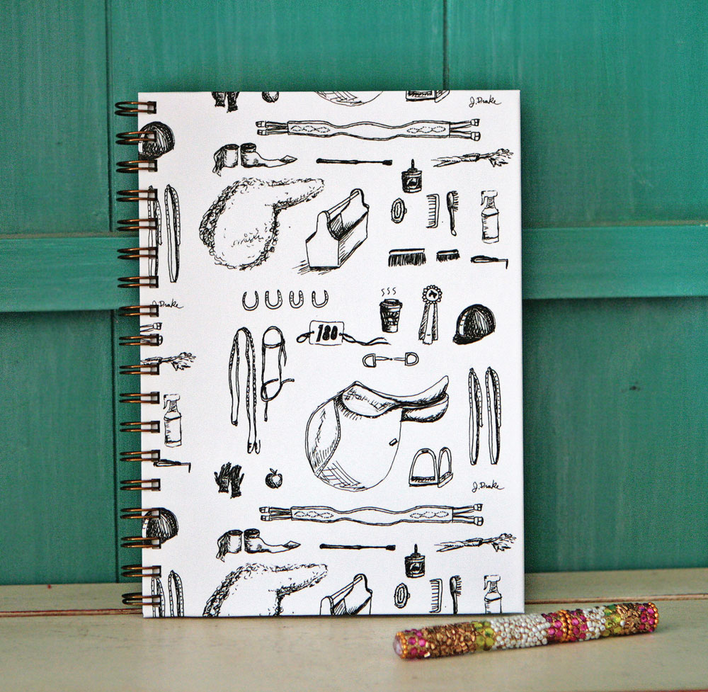 Horse rider's journal from The Painting Pony
