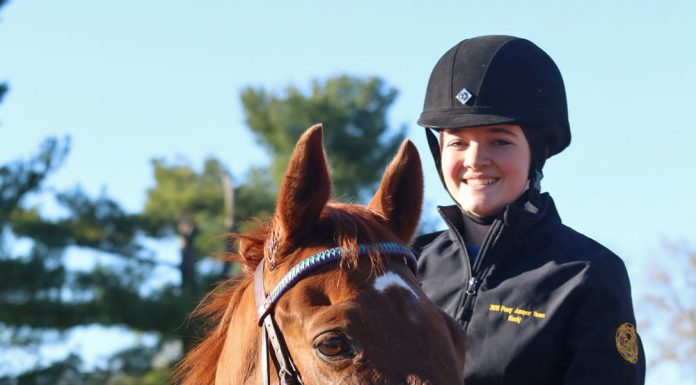 New Vocations Pony Club Challenge competitor Keely Bechtol is working with her adopted OTTB, Whiskey.