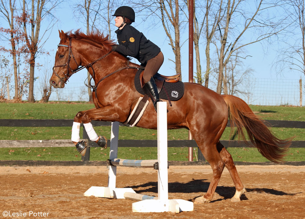 Keely Bechtol and her off-track Thoroughbred, Whiskey
