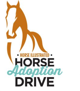 Horse Illustrated Horse Adoption Drive