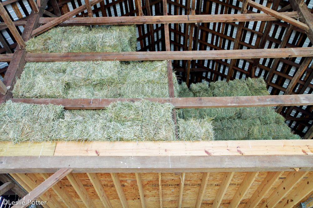 Hay stored in a hay loft