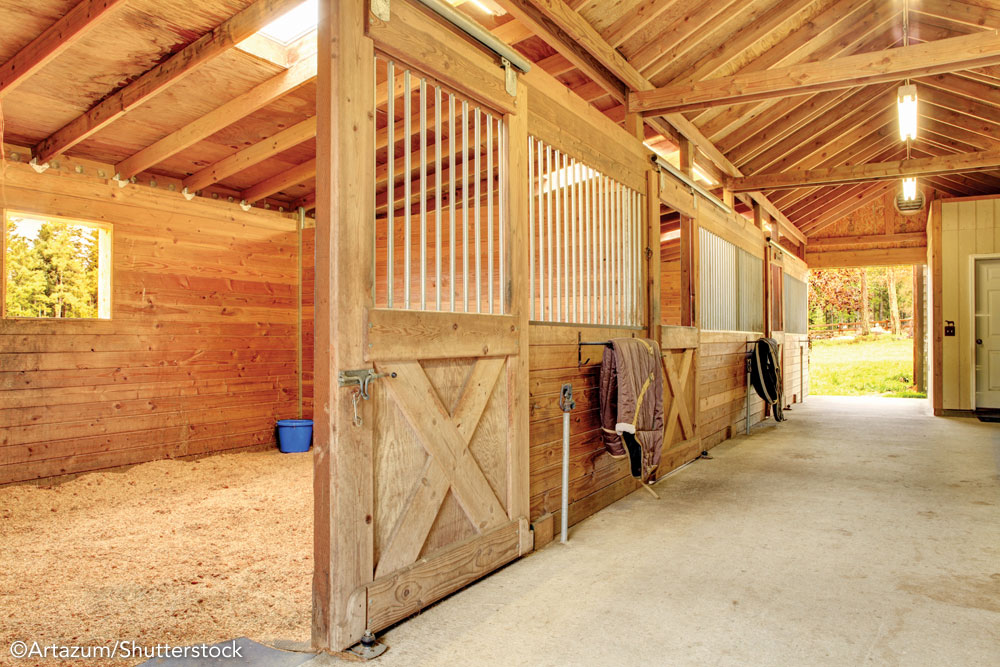 Interior of a horse barn
