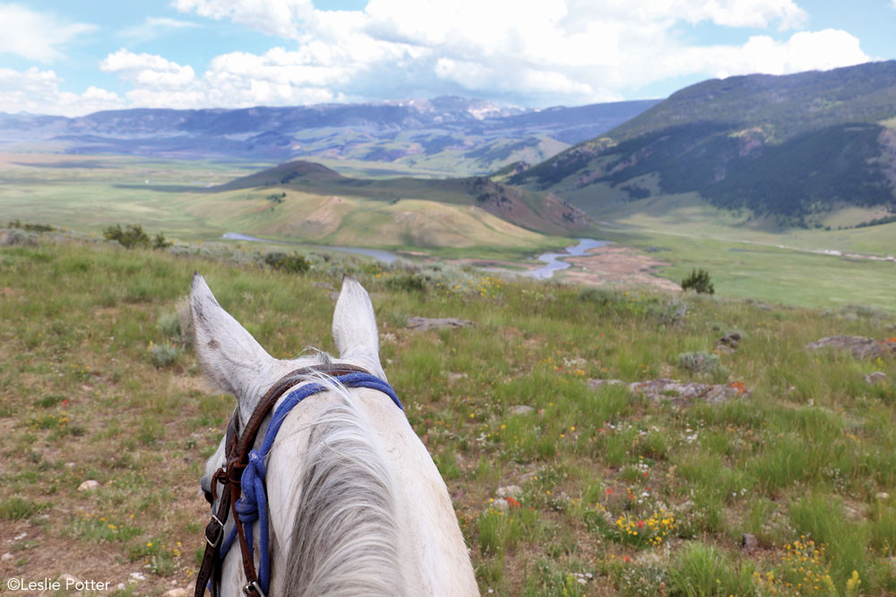 Trail riding above the National Elk Refuge in Jackson Hole, Wyoming