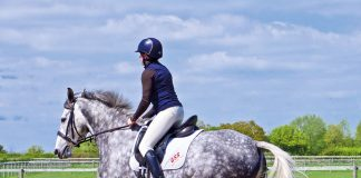 Horse and rider cantering