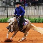 Cade McCutcheon and Custom Made Gun performing a spin in reining competition at the FEI World Equestrian Games Tryon 2018