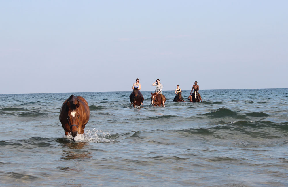 Horses and riders in a lake at Kande Horse