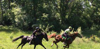 Endurance riders Christopher and Morgan Loomis riding their Morgan horses.