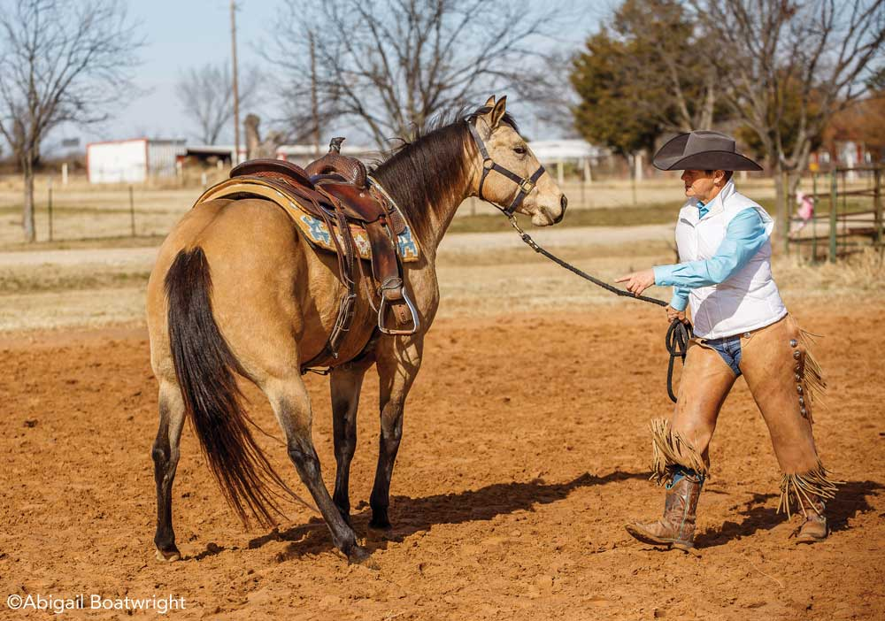 Brenda Hilgencamp working with a buckskin horse from the ground