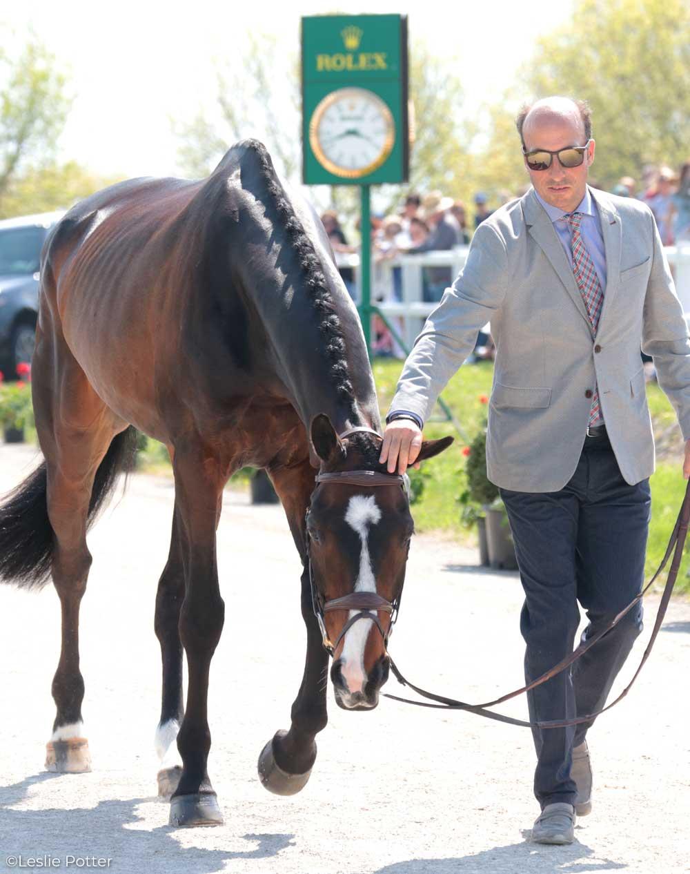 Tim Price (NZL) and Xavier Faer, a British Sport Horse.