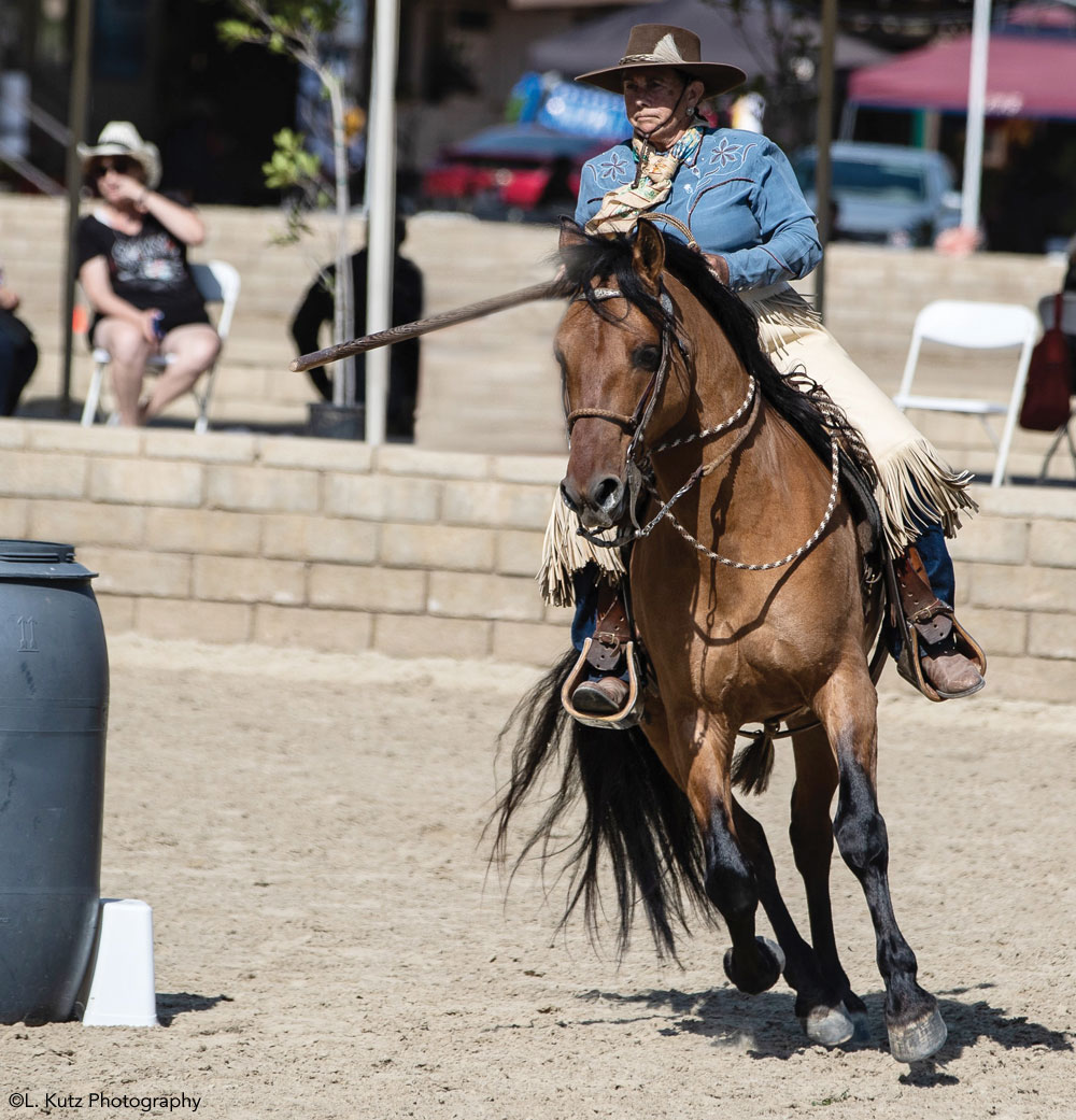 Horse and rider competing in Working Equitation