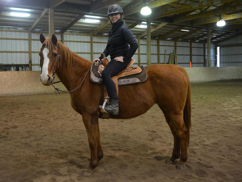 Fern, an adoptable Quarter Horse mare located in Colorado