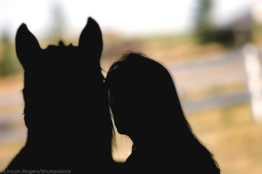 Silhouette of a woman and a horse