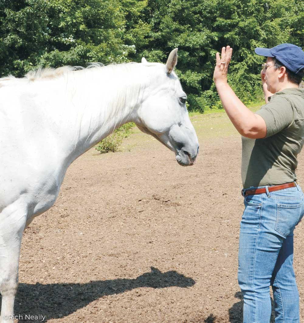 "Trainer Sharon Wilsie demonstrating an ""X"" posture"