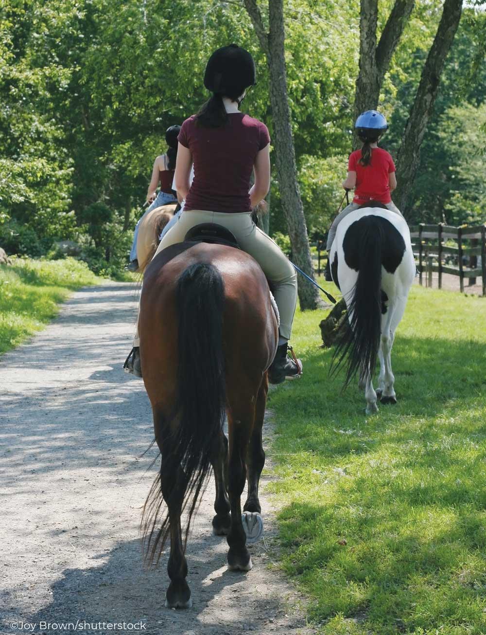 Three English riders riding down a path