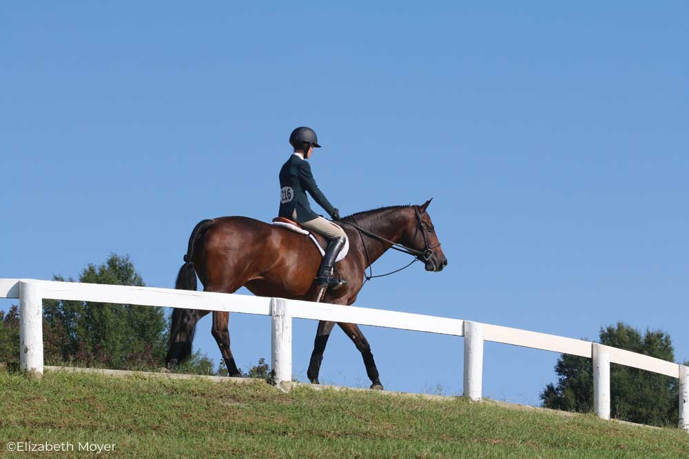 English rider in the warmup ring at a horse show