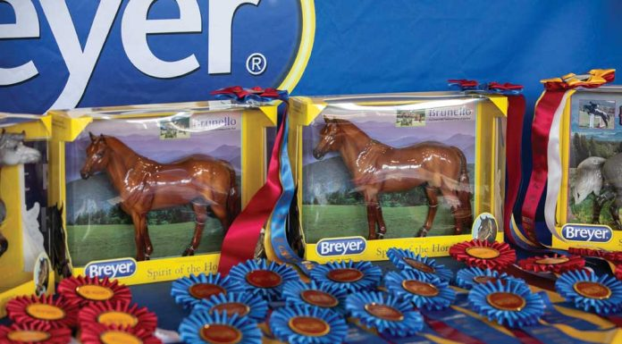 Model horses and championship ribbons at a model horse show