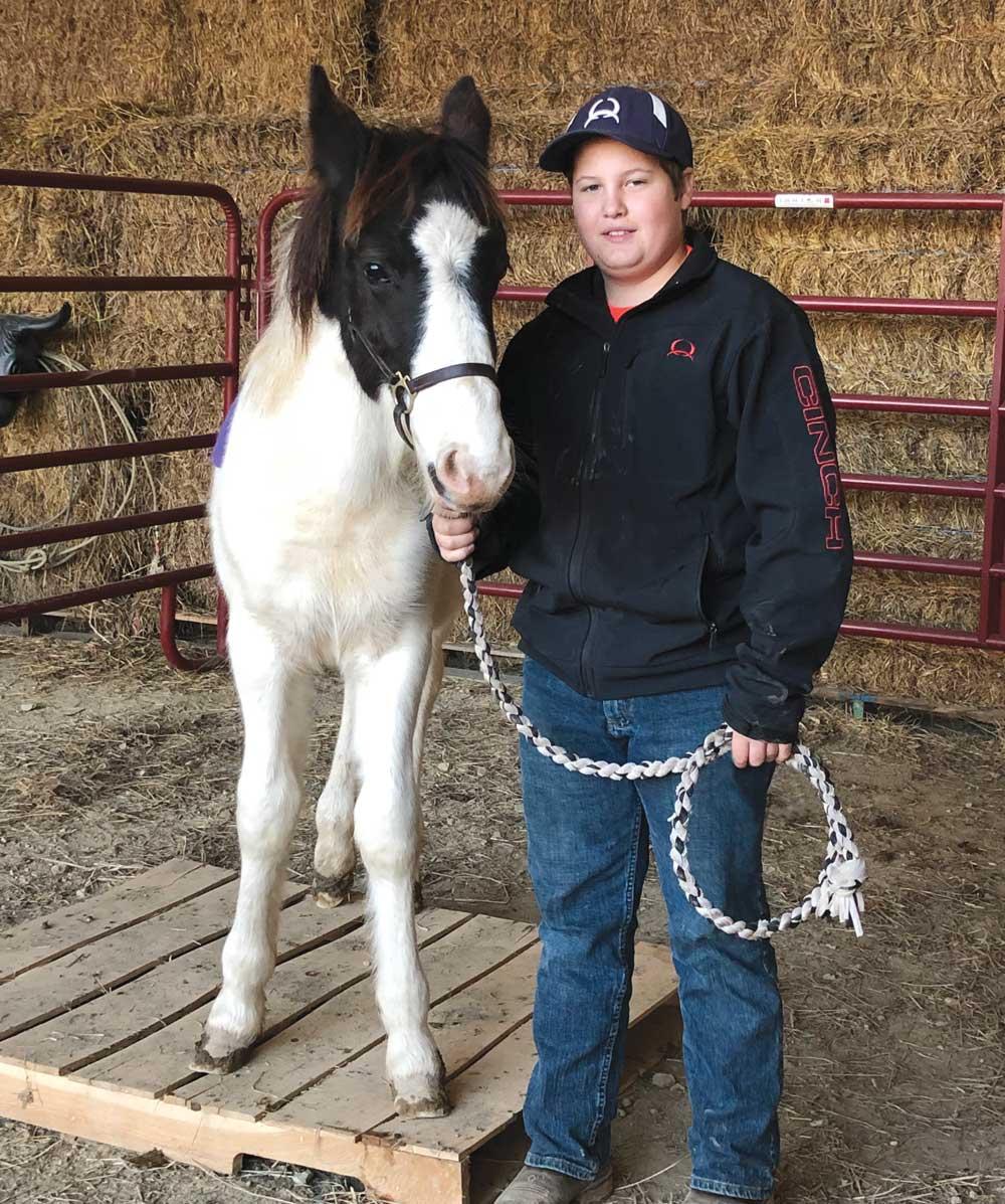John and his Chincoteague Pony, Bandit
