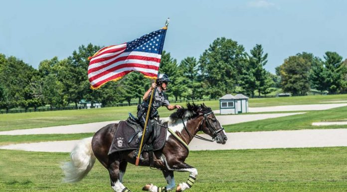 Police horse Oliver with Capt. Lisa Rakes at the Kentucky Horse Park