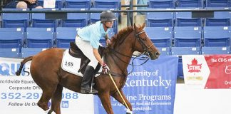Buck Schott and Great Reward at the 2019 Thoroughbred Makeover