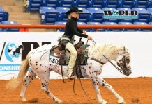 2020 Appaloosa World Shows