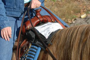 Cashel Trail Kit Pack - Trail Tack and Gear