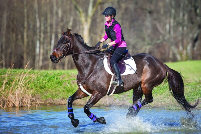 Horse rider at water obstacle.