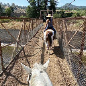 Crossing L.A. river on horseback.