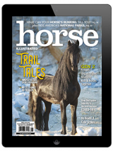 August 2020 Digital Issue of Horse Illustrated