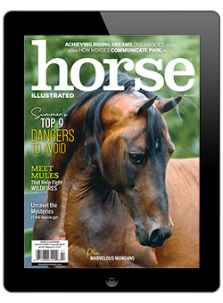 Horse Illustrated July 2021 Digital Issue