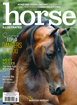 Horse Illustrated July 2021 Print Issue