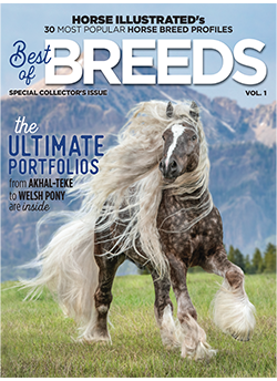 Featuring 30 of Horse Illustrated's most popular breed profiles.