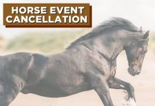 Horse Event Cancellation for Coronavirus